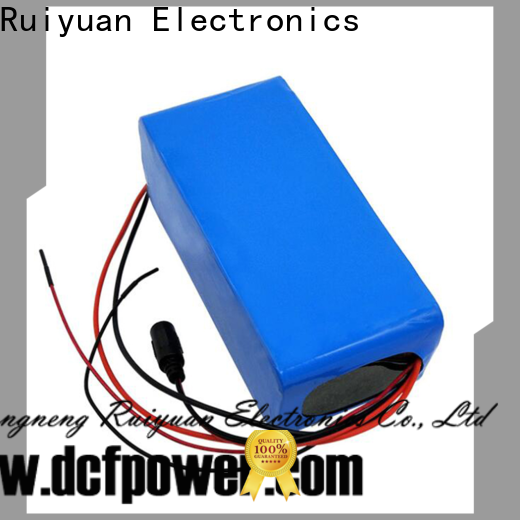 Custom portable usb battery pack for business for electric vehicles