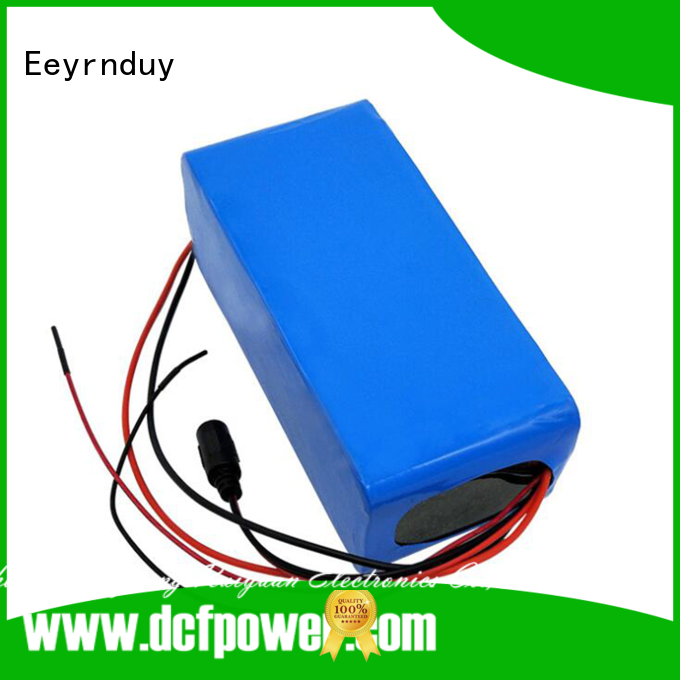 Eeyrnduy top portable battery packs company for Consumer Electronics